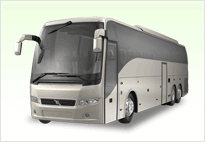 40 Passenger Party Bus Rental Concord